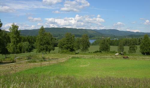 Beitemark på Låkeberget