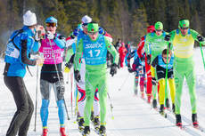 Intresset fr Swix Ski Classics har kat under 2013. Hr tten under finalen i refjllsloppet. FOTO: Magnus sth.