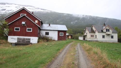boland Skjåk 01