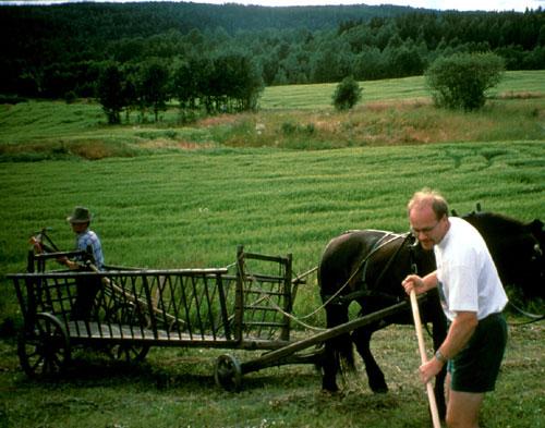 Kirkebyområdet 1995. Foto: Trygve Christensen