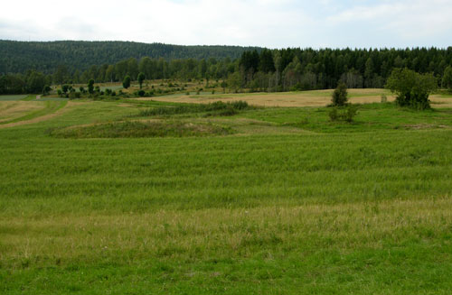 Kirkebyområdet 2005. Foto: Tor Øystein Olsen