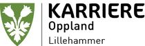 Karriere Oppland 2015