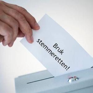 Bruk stemmeretten