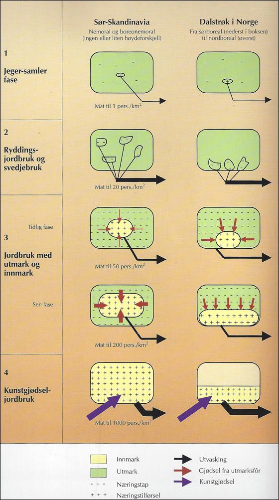 Næringstoffhypotesen2.jpg