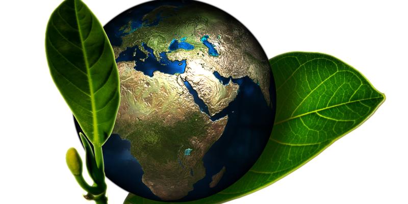 Jorden i et blad