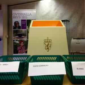 Folkeavstemning-16