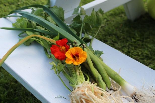 Tveiten_grønsaker.jpg