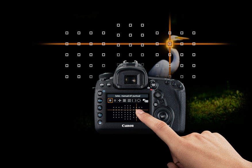 EOS 5D MkIV English Custom Touch AF life style
