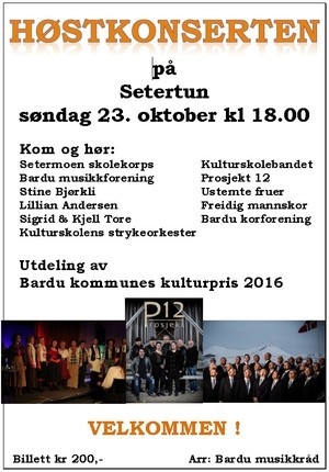 Plakat kulturpris 2016_300x430_300x430[1].jpg