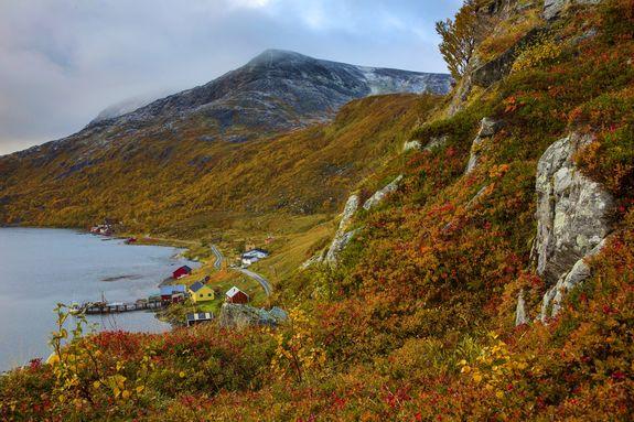 Hasfjord - copyright Anne Olsen-Ryum