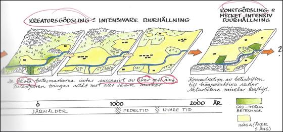 Ekstam-historie2-2000.jpg