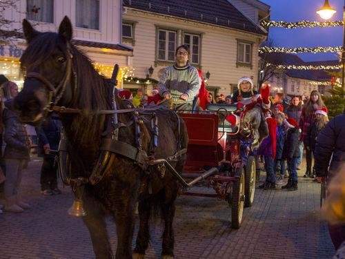 Hest i Julebyen