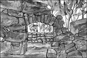 Ruin oppgangssag; Frances Dodman