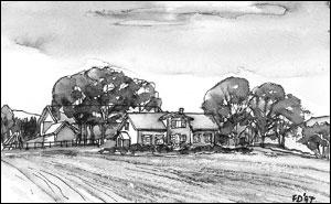 Nes gård; Frances Dodman