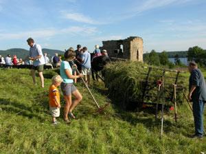 Raking av slåtteeng olsok 2004. Foto: Tor Øystein Olsen