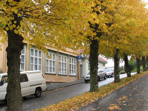 Helsestasjonen om høsten