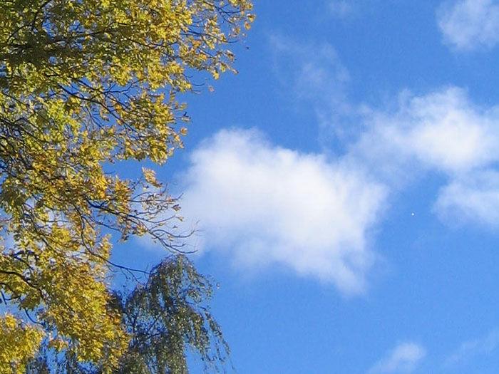 Bo og servicesentre, blå himmel