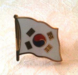 koreansk flagg pin