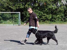 Dalane Hundeklubb. Bilde fra klubbens hjemmeside