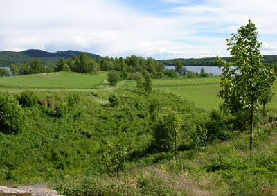 Bekkedalen Foto: Tor Øystein Olsen