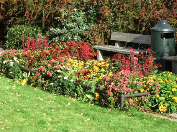 Utemiljø og vei - blomster