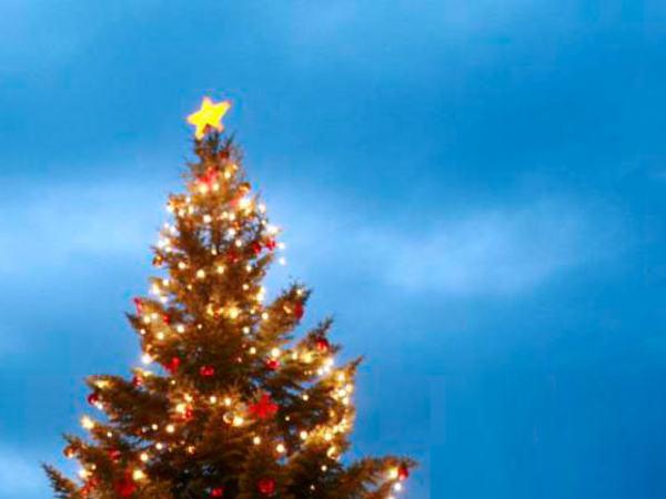 Juletre i julebyen Egersund