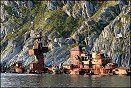 Den russiske krysseren Murmansk