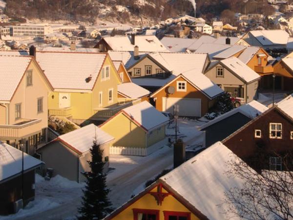 Hustak i boligfelt