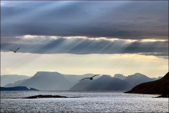 Kjærlighetsvisa til Sørøya
