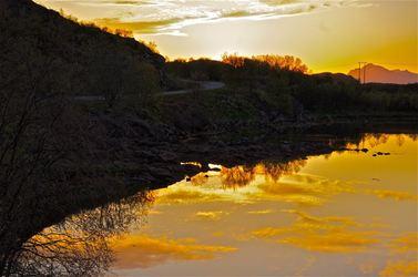 Gult landskap. Foto Jean R. Kolbjørnsen
