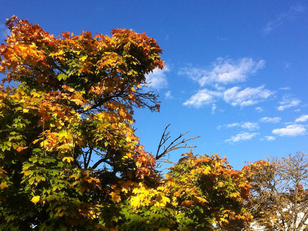 Høstlige himmel og farger