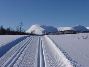 Skispor Reistadløypa