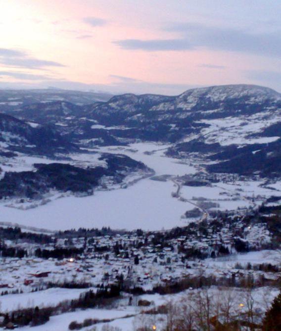Øyerbygda vinter_cropped_568x669