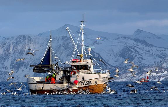 Fiskebåt - foto: Anne Olsen-Ryum