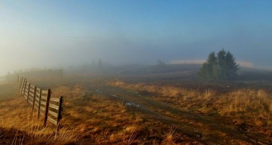 Høst ved Hafjelltoppen Foto Kristin Merete Kolbu.jpg
