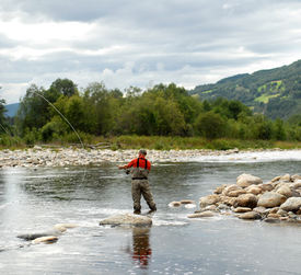 fisker i elva