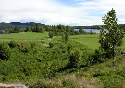 Bekkedalen i Maridalen. Foto: Tor Øystein Olsen