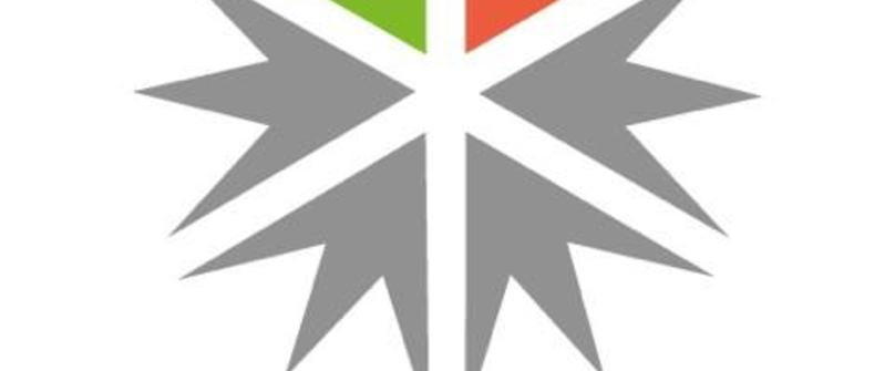 LIM logo II