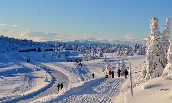 Vinter ved Pellestova