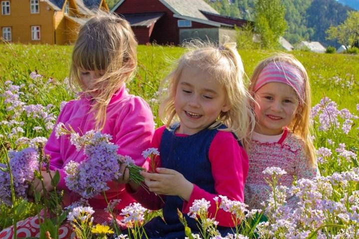 Blomsterjenter