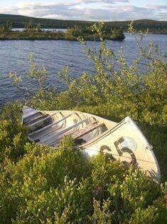 Kano i lyngen ved Reinsvatn