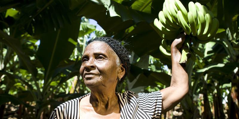 Kvinne bananplantasje