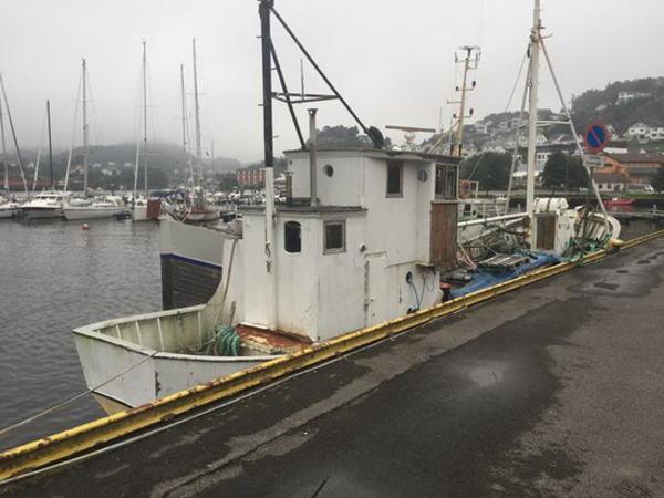 Fiskebåter i indre havn