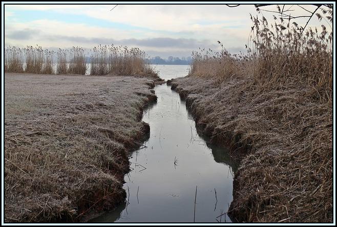frost-247995_640.jpg