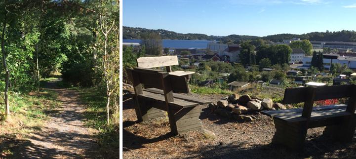 Bilder fra Hundremeterskogen i Kristiansand