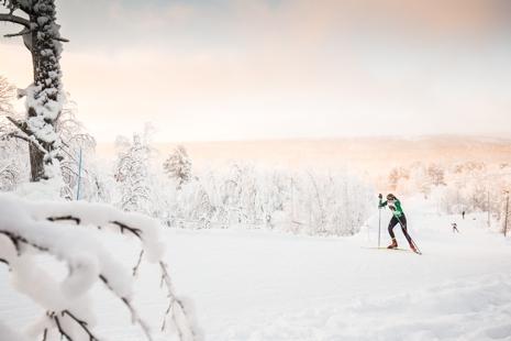 vintervy_bruksvallarna.jpg