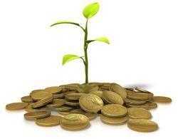 penger vekst