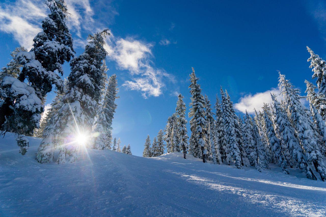 Vinter snø vakkert ute vær ski Unsplash