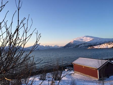 Strøksne, foto Hege Ruud