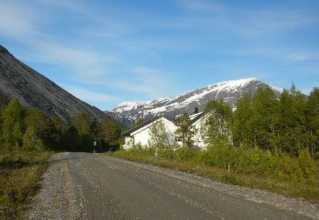Skogveien på Straumen skal asfalteres